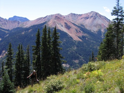View of Brown Mountain from Richmond Pass Trail (east)