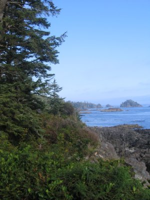Pacific coast from Ucluelet